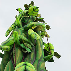 Beanstalk - theatrical props hire