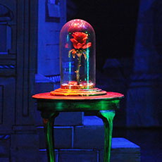 The Enchanted Rose - radio controlled special effects prop for hire