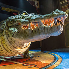 Bill the Croc - animatronic crocodile